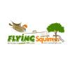 Logo design Flying Squirrels chiangmai