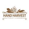 Logo design Hand Harvest chiangmai